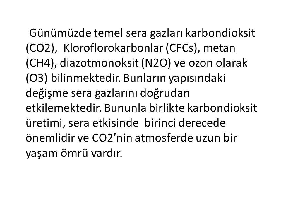 Günümüzde temel sera gazları karbondioksit (CO2), Kloroflorokarbonlar (CFCs), metan (CH4), diazotmonoksit (N2O) ve ozon olarak (O3) bilinmektedir. Bun