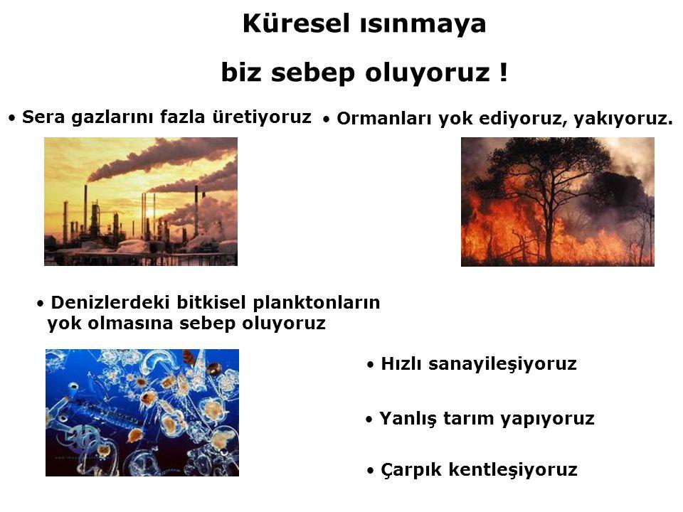 • Sera gazlarını fazla üretiyoruz • Ormanları yok ediyoruz, yakıyoruz. • Hızlı sanayileşiyoruz • Denizlerdeki bitkisel planktonların yok olmasına sebe