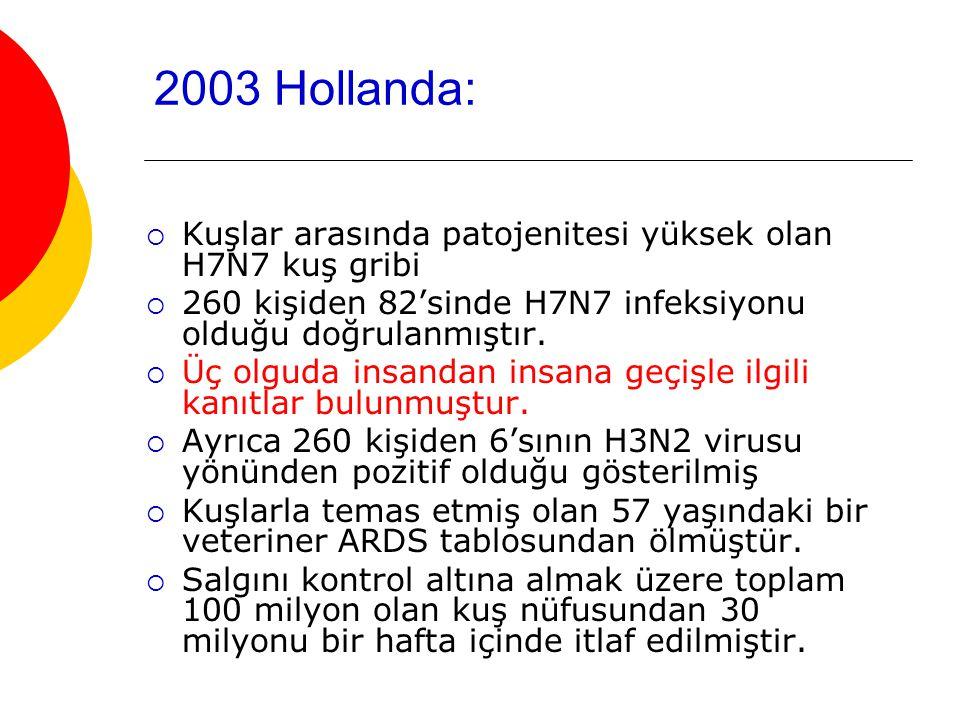 2003 Hollanda:  Kuşlar arasında patojenitesi yüksek olan H7N7 kuş gribi  260 kişiden 82'sinde H7N7 infeksiyonu olduğu doğrulanmıştır.
