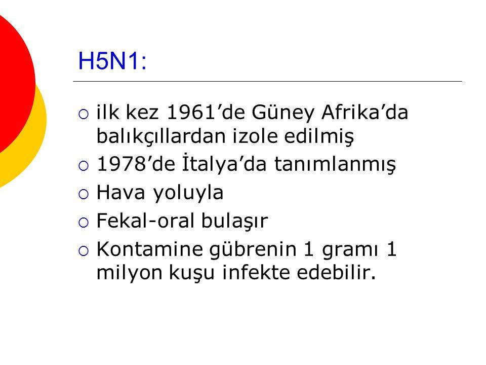 H5N1:  ilk kez 1961'de Güney Afrika'da balıkçıllardan izole edilmiş  1978'de İtalya'da tanımlanmış  Hava yoluyla  Fekal-oral bulaşır  Kontamine gübrenin 1 gramı 1 milyon kuşu infekte edebilir.
