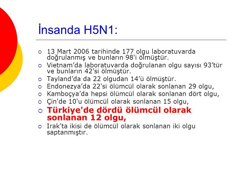 İnsanda H5N1:  13 Mart 2006 tarihinde 177 olgu laboratuvarda doğrulanmış ve bunların 98 i ölmüştür.