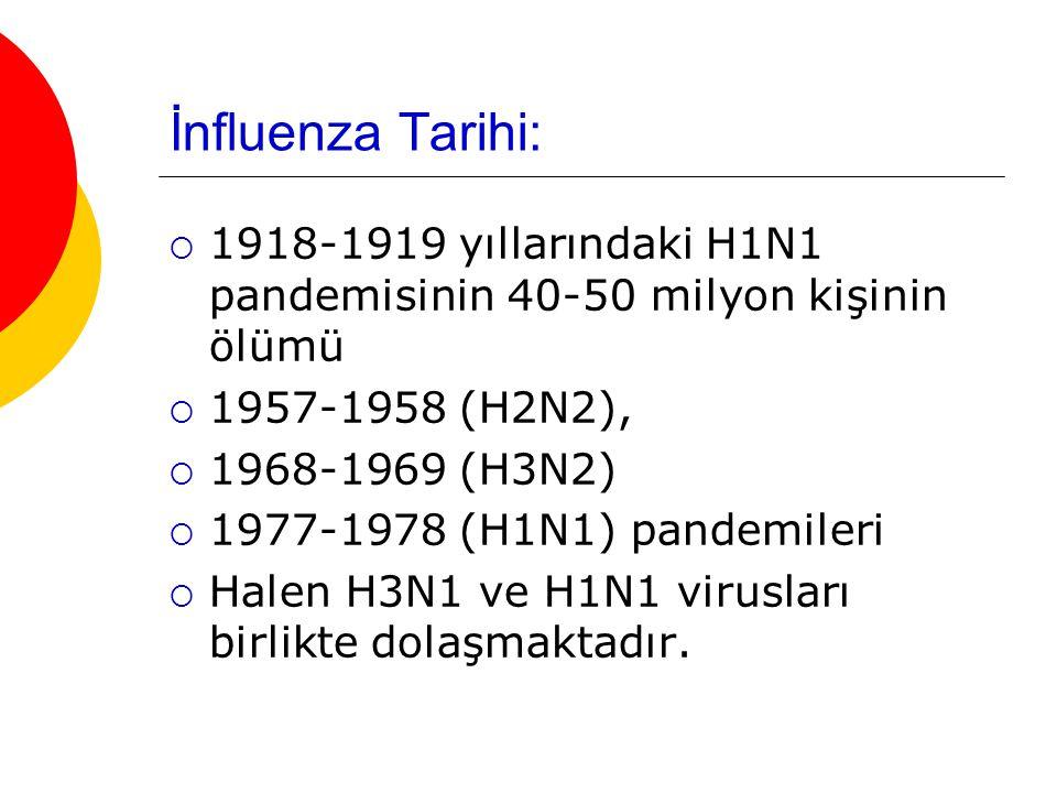 İnfluenza Tarihi:  1918-1919 yıllarındaki H1N1 pandemisinin 40-50 milyon kişinin ölümü  1957-1958 (H2N2),  1968-1969 (H3N2)  1977-1978 (H1N1) pandemileri  Halen H3N1 ve H1N1 virusları birlikte dolaşmaktadır.