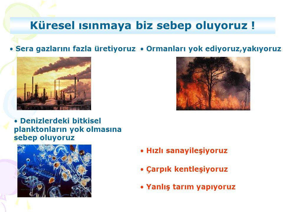 • Sera gazlarını fazla üretiyoruz• Ormanları yok ediyoruz,yakıyoruz • Çarpık kentleşiyoruz • Hızlı sanayileşiyoruz • Denizlerdeki bitkisel planktonlar