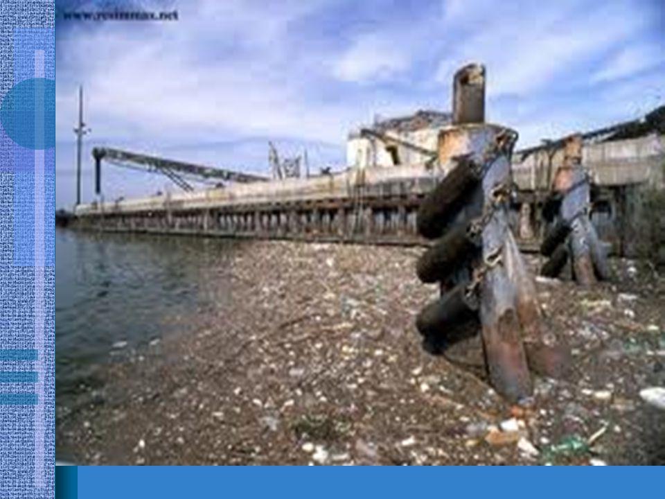 •Son yıllarda teknoloji ve sanayinin hızla gelişmesi, çevre sorunlarının da artmasına sebep olmuştur.