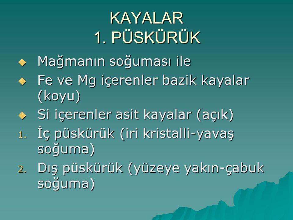 KAYALAR 1.