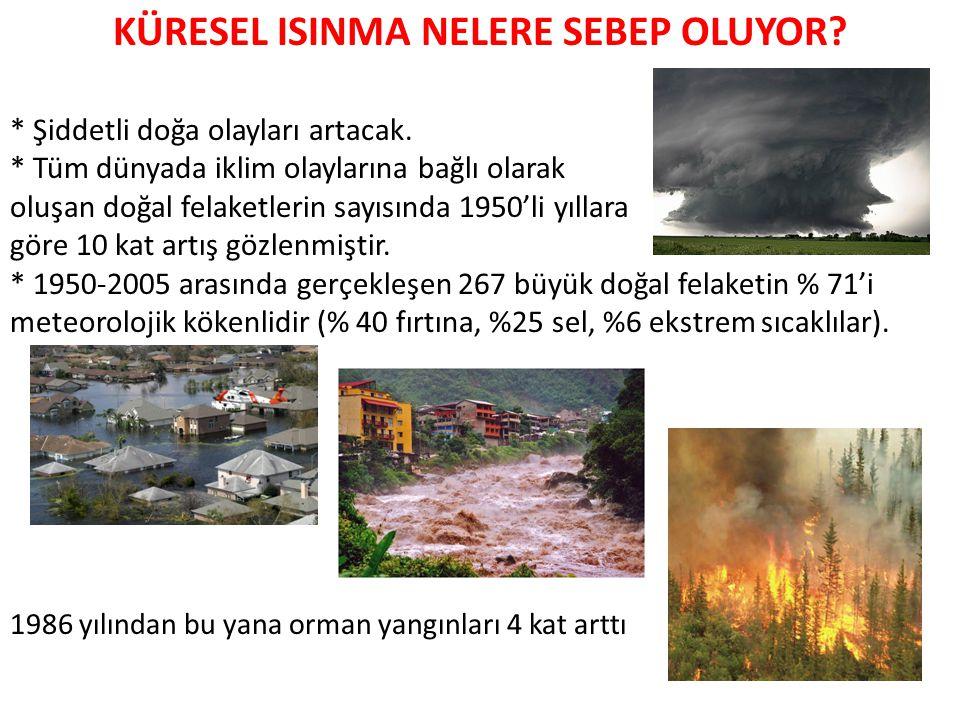 KÜRESEL ISINMA NELERE SEBEP OLUYOR.* Şiddetli doğa olayları artacak.