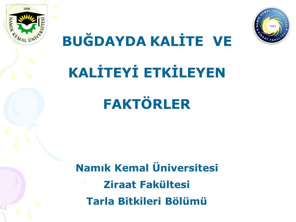 BUĞDAYDA KALİTE VE KALİTEYİ ETKİLEYEN FAKTÖRLER Namık Kemal Üniversitesi Ziraat Fakültesi Tarla Bitkileri Bölümü