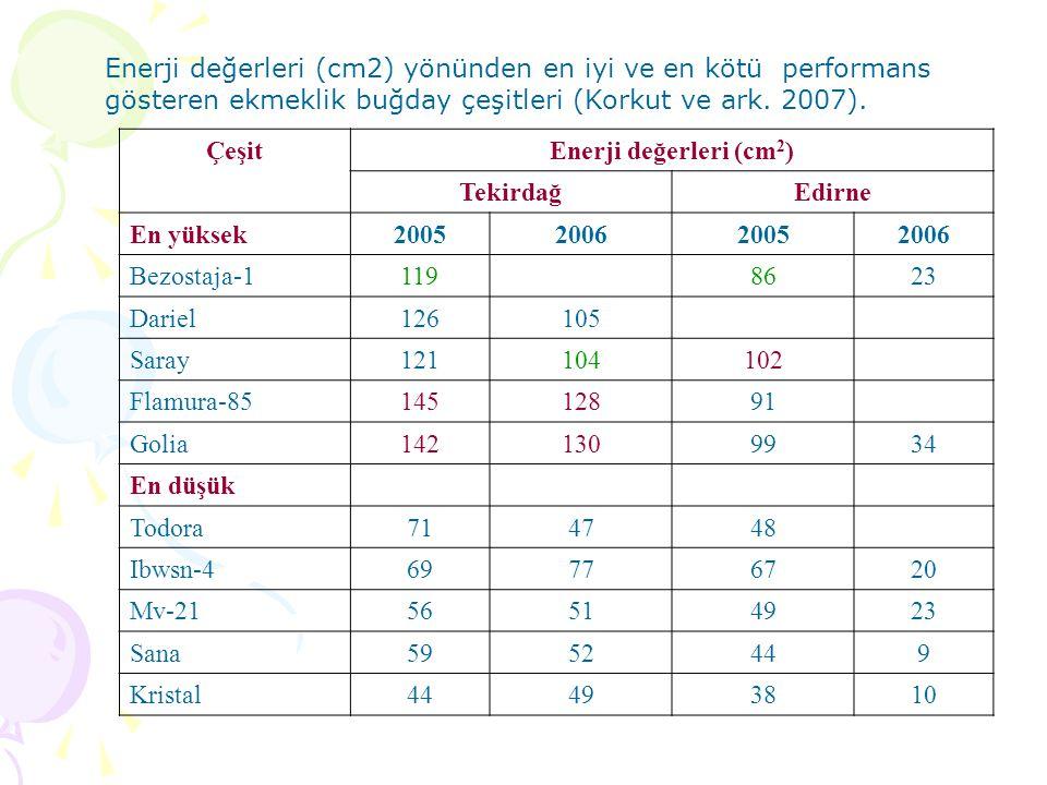 ÇeşitEnerji değerleri (cm 2 ) TekirdağEdirne En yüksek2005200620052006 Bezostaja-11198623 Dariel126105 Saray121104102 Flamura-8514512891 Golia1421309934 En düşük Todora714748 Ibwsn-469776720 Mv-2156514923 Sana5952449 Kristal44493810 Enerji değerleri (cm2) yönünden en iyi ve en kötü performans gösteren ekmeklik buğday çeşitleri (Korkut ve ark.