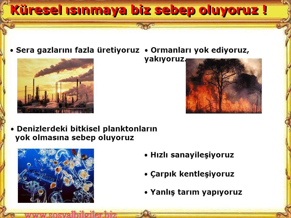 • Sera gazlarını fazla üretiyoruz• Ormanları yok ediyoruz, yakıyoruz.