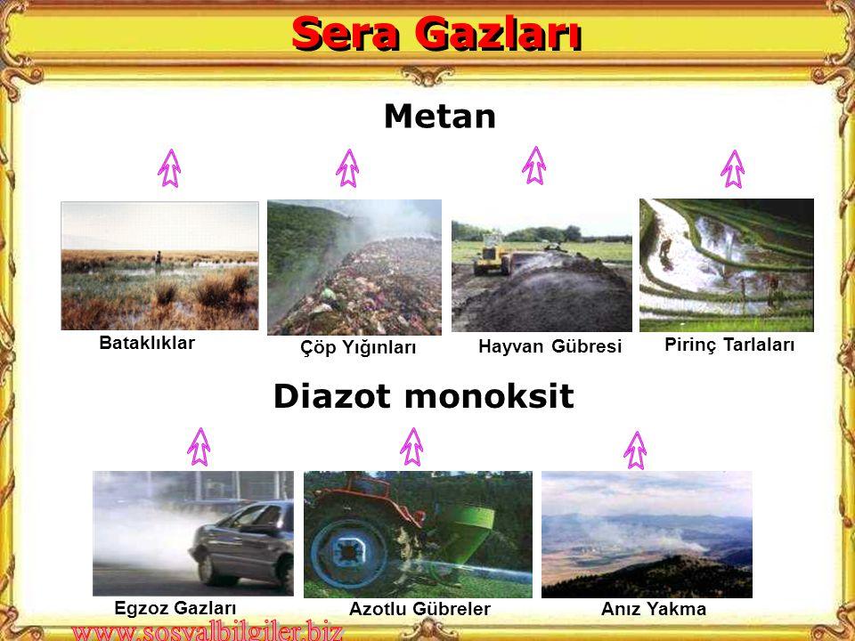 Diazot monoksit Egzoz Gazları Azotlu Gübreler Anız Yakma Metan Çöp Yığınları Hayvan Gübresi Pirinç Tarlaları Bataklıklar Sera Gazları