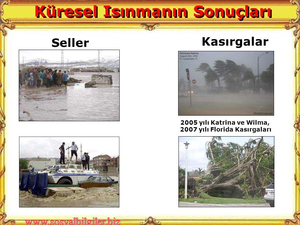 Seller Kasırgalar 2005 yılı Katrina ve Wilma, 2007 yılı Florida Kasırgaları Küresel Isınmanın Sonuçları
