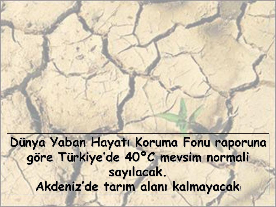 Dünya Yaban Hayatı Koruma Fonu raporuna göre Türkiye'de 40ºC mevsim normali sayılacak. Akdeniz'de tarım alanı kalmayacak !