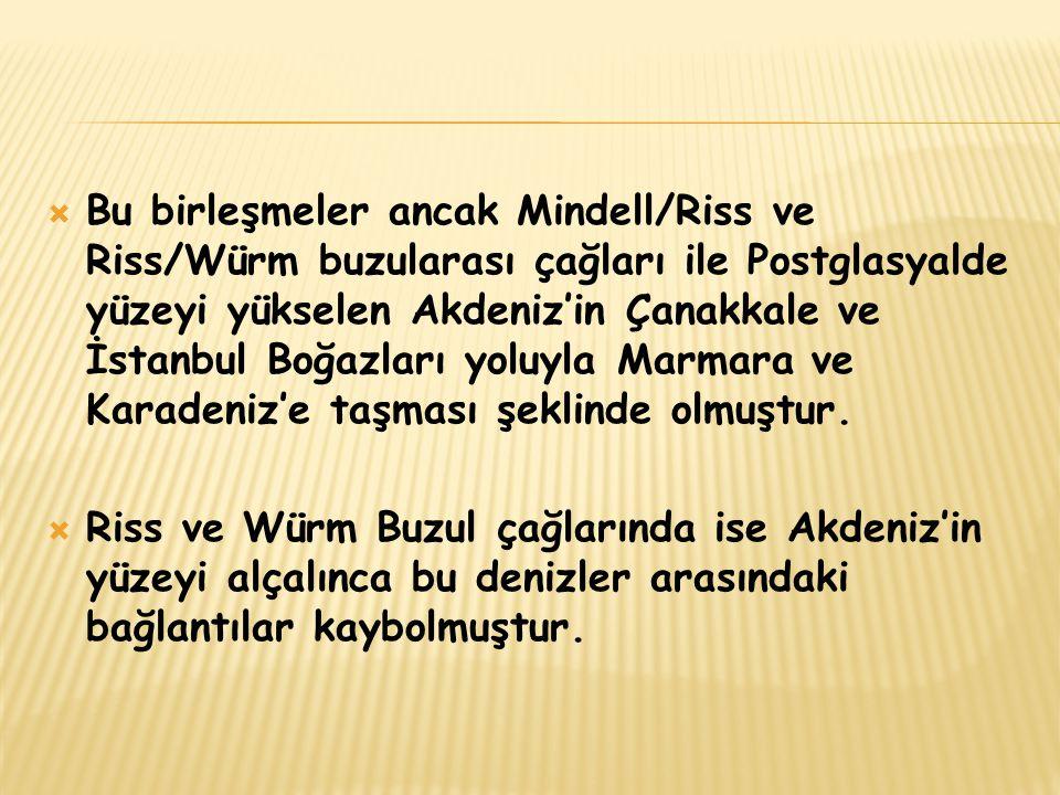  Bu birleşmeler ancak Mindell/Riss ve Riss/Würm buzularası çağları ile Postglasyalde yüzeyi yükselen Akdeniz'in Çanakkale ve İstanbul Boğazları yoluy