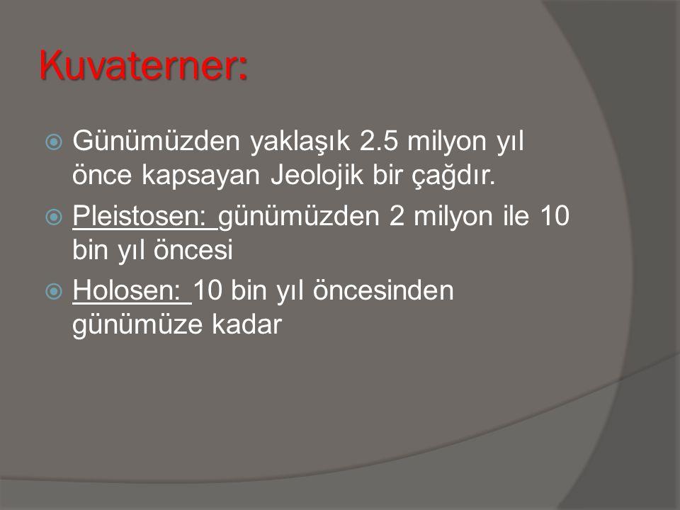 Kuvaterner:  Günümüzden yaklaşık 2.5 milyon yıl önce kapsayan Jeolojik bir çağdır.  Pleistosen: günümüzden 2 milyon ile 10 bin yıl öncesi  Holosen: