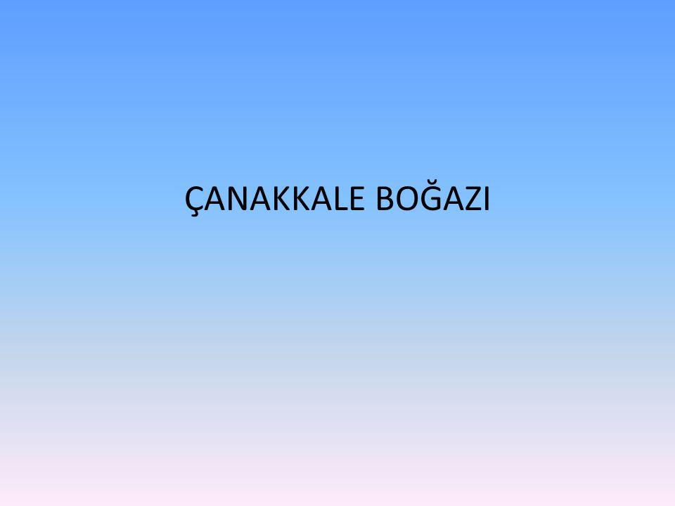 • Bu pazarlıklar içerisinde Çanakkale Savaşları devam etti.
