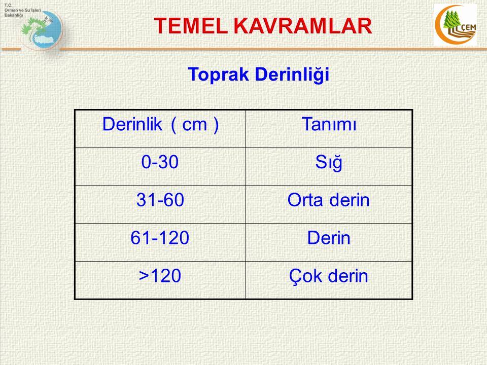 Toprak Derinliği Derinlik ( cm )Tanımı 0-30Sığ 31-60Orta derin 61-120Derin >120Çok derin