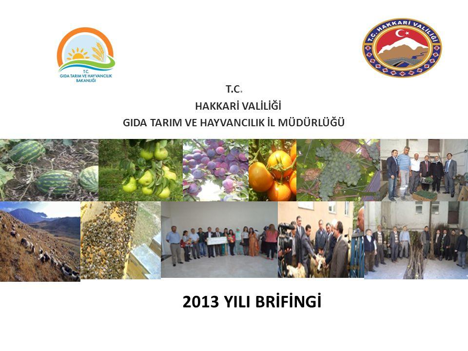 2-Hakkari İlinde Sebzeciliği Geliştirme Projesi: Hakkari il ve ilçelerinde geçimini tarımsal üretimle sağlayan çiftçilerimize proje ile alınacak aşılı ve aşısız sebze fideleri(domates, karpuz) ile yeni sebze üretim alanları oluşturmak, bu üretim alanlarından başlayarak sebze üretim miktarının, kalite ve veriminin iyileştirilmesi suretiyle, sebzecilik alanlarında verimin arttırılmasını sağlamak ve üretici gelirlerinin artırılması ile çiftçilerimizin pazarlama kabiliyetlerinin geliştirilmesi hedeflenmektedir.