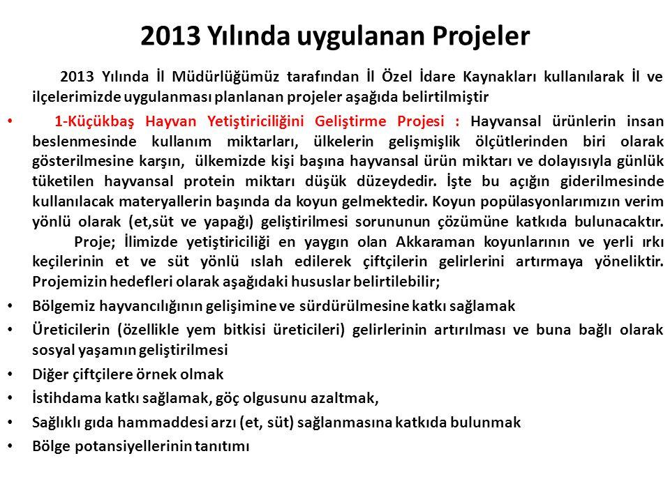 2013 Yılında uygulanan Projeler 2013 Yılında İl Müdürlüğümüz tarafından İl Özel İdare Kaynakları kullanılarak İl ve ilçelerimizde uygulanması planlana