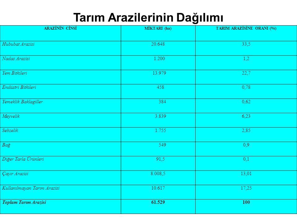 Tarım Arazilerinin Dağılımı ARAZİNİN CİNSİMİKTARI (ha)TARIM ARAZİSİNE ORANI (%) Hububat Arazisi20.64833,5 Nadas Arazisi 1.2001,2 Yem Bitkileri 13.9792