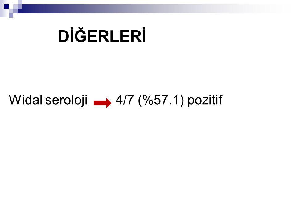 DİĞERLERİ Widal seroloji 4/7 (%57.1) pozitif