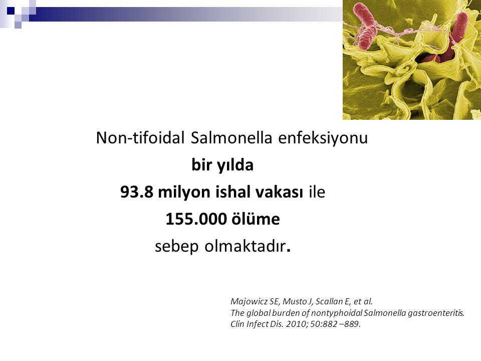 Non-tifoidal Salmonella enfeksiyonu bir yılda 93.8 milyon ishal vakası ile 155.000 ölüme sebep olmaktadır. Majowicz SE, Musto J, Scallan E, et al. The
