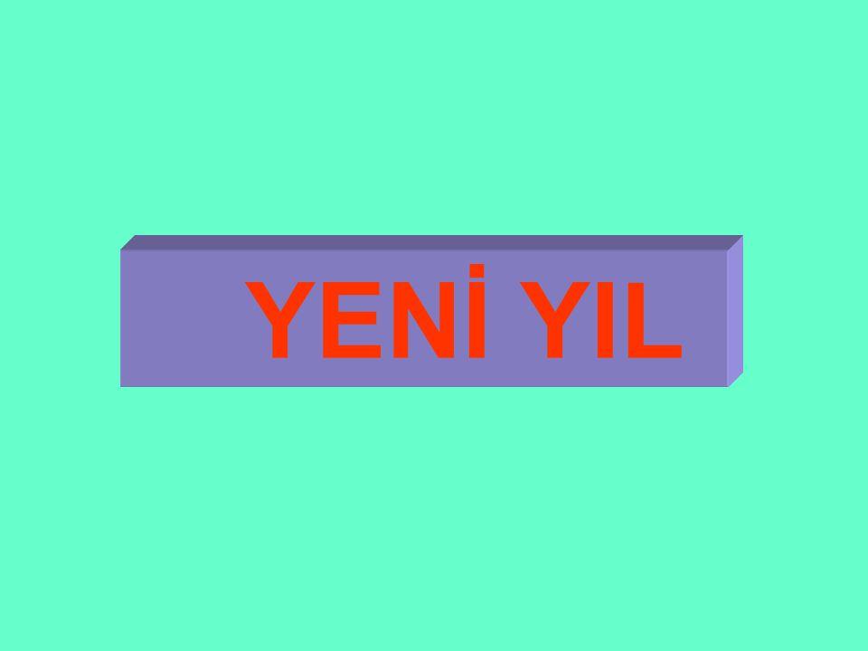YENİ YIL