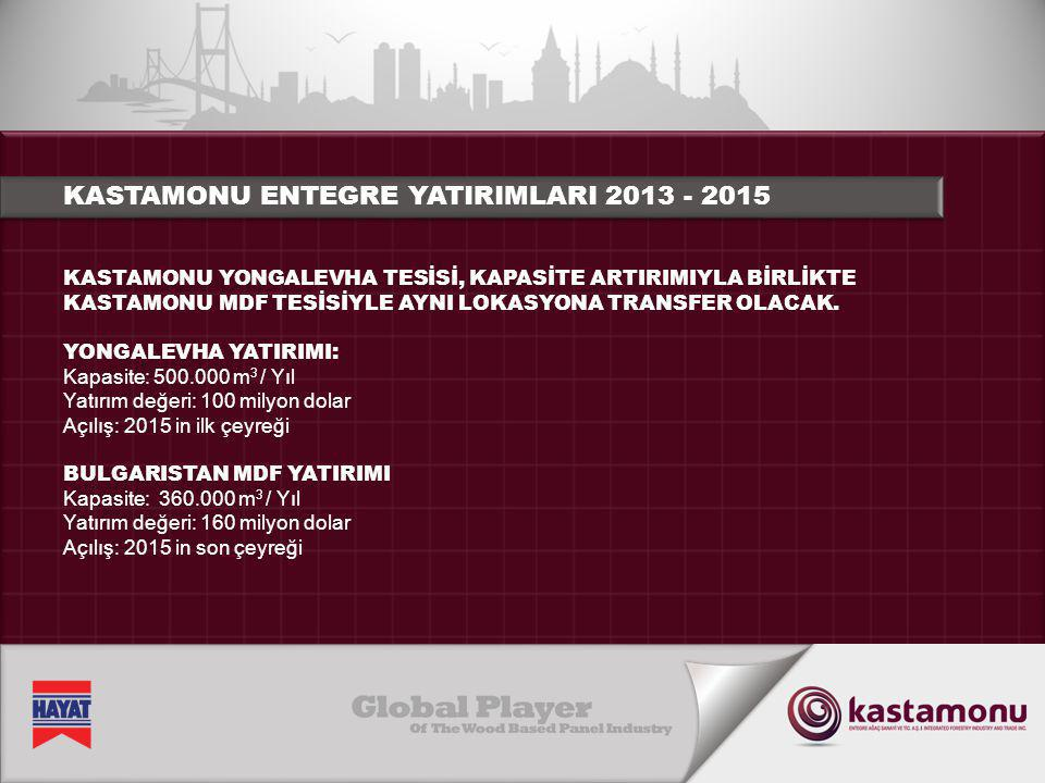 KASTAMONU INTEGRATED RUSYA FEDERASYONU TATARSTAN YATIRIMI