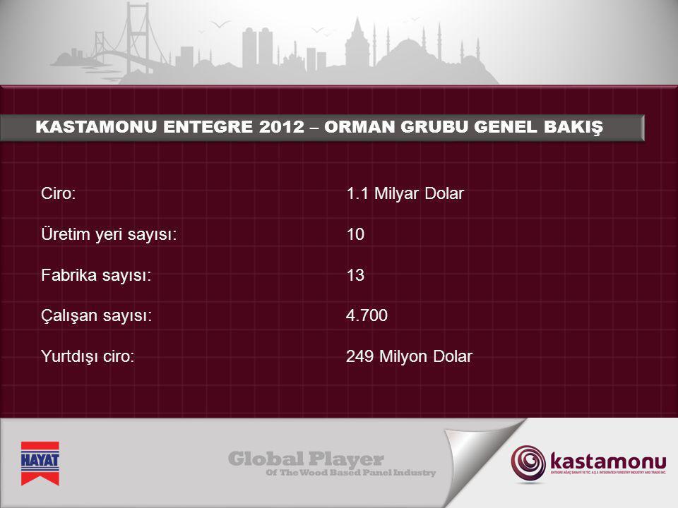 Ciro: Üretim yeri sayısı: Fabrika sayısı: Çalışan sayısı: Yurtdışı ciro: 1.1 Milyar Dolar 10 13 4.700 249 Milyon Dolar KASTAMONU ENTEGRE 2012 – ORMAN