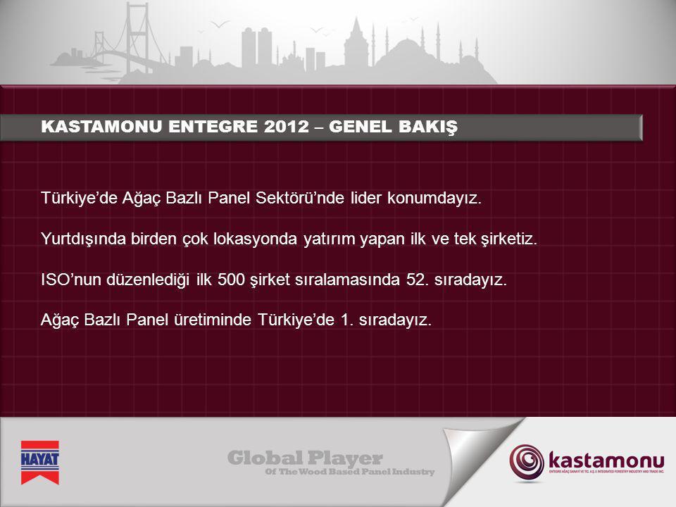 Türkiye'de uzun yıllardan beri Ağaç Bazlı Panel Üretimi'nde ihracatta 1.