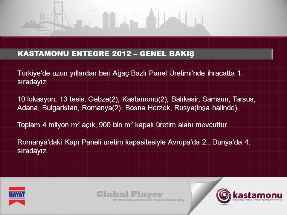Türkiye'de uzun yıllardan beri Ağaç Bazlı Panel Üretimi'nde ihracatta 1. sıradayız. 10 lokasyon, 13 tesis: Gebze(2), Kastamonu(2), Balıkesir, Samsun,