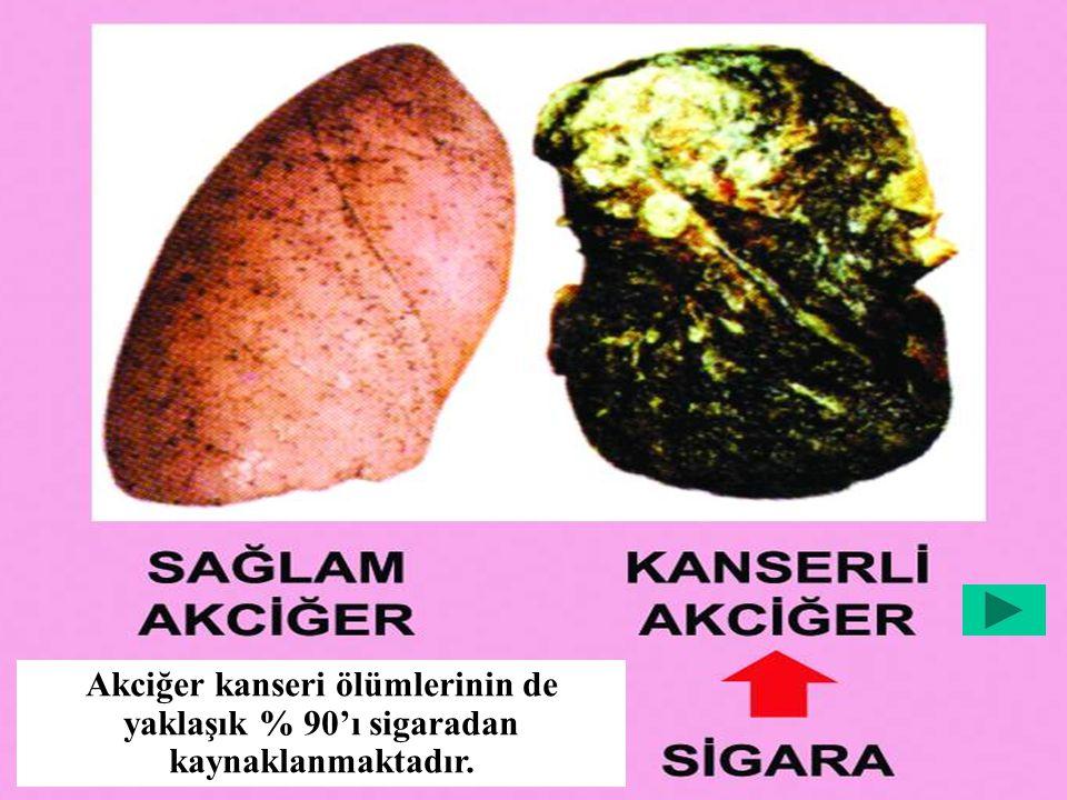 Sigara Dumanının İçeriği – Mikroplu bir şırınga Nikotin Karbon Monoksit KatranAseton Kadmiyum Arsenik Sigara Dumanı, 40'ının kanserojen olduğu bilinen