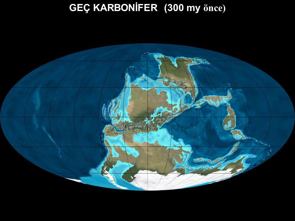 ERKEN KARBONİFER (340 my önce) Gondwana Lavrusya