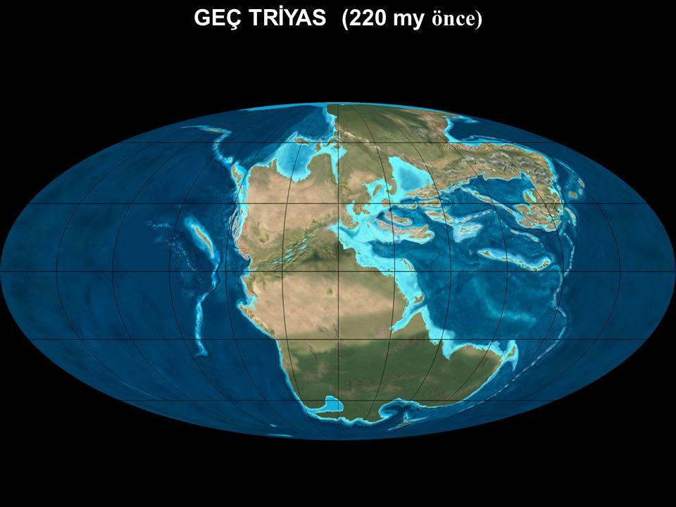 ERKEN – ORTA TRİYAS (240 my önce) PANJEA