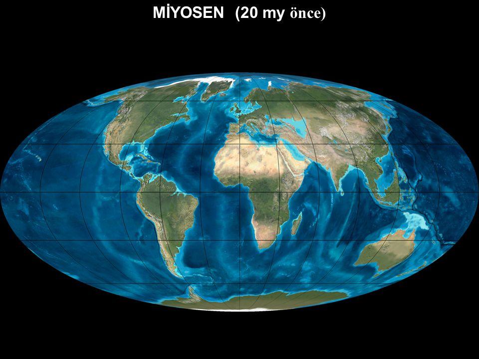 OLİGOSEN (30 my önce)