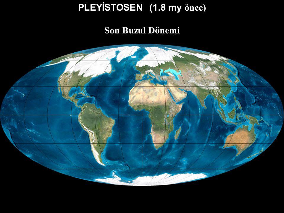 MİYOSEN (20 my önce)