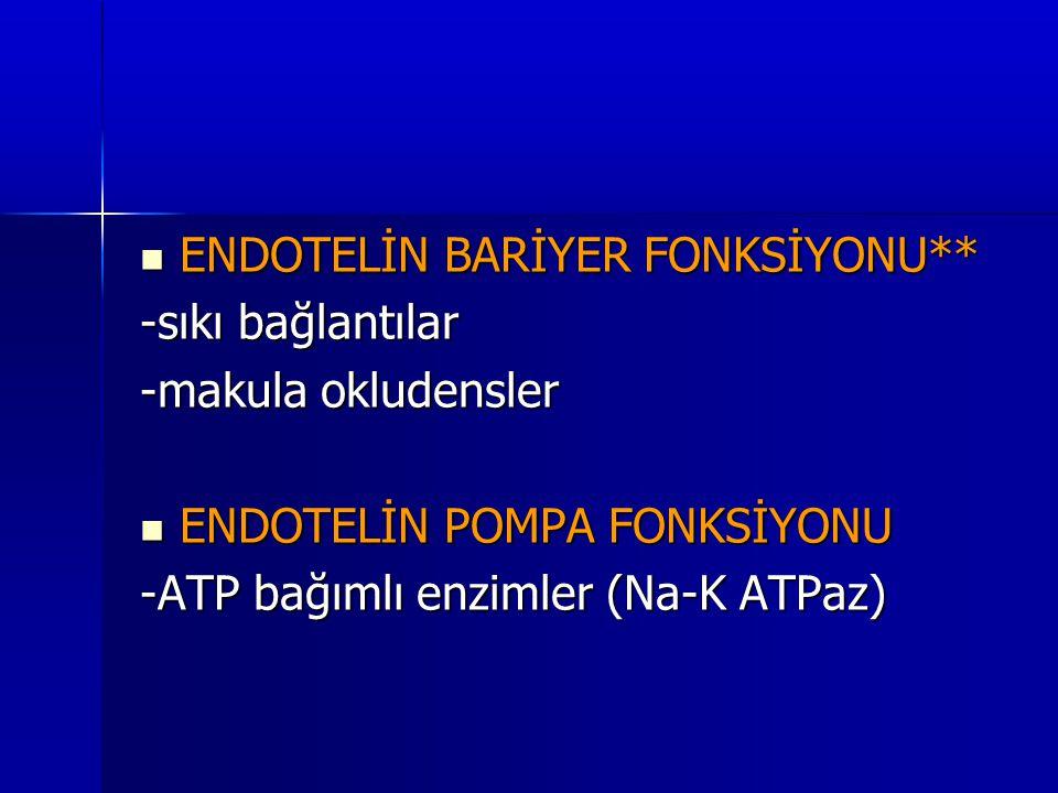  ENDOTELİN BARİYER FONKSİYONU** -sıkı bağlantılar -makula okludensler  ENDOTELİN POMPA FONKSİYONU -ATP bağımlı enzimler (Na-K ATPaz)