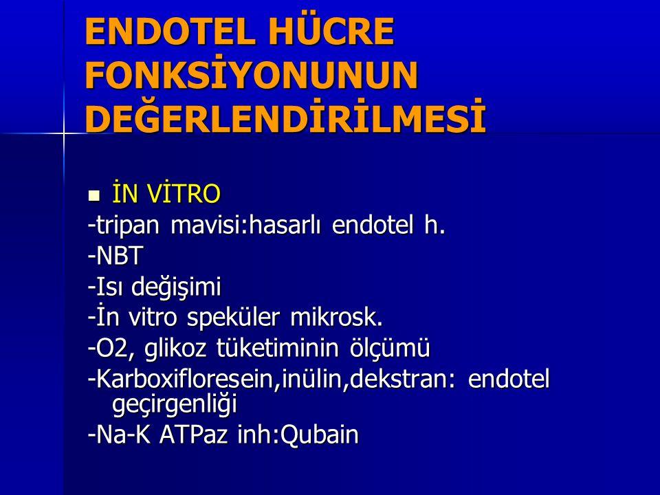 ENDOTEL HÜCRE FONKSİYONUNUN DEĞERLENDİRİLMESİ  İN VİTRO -tripan mavisi:hasarlı endotel h. -NBT -Isı değişimi -İn vitro speküler mikrosk. -O2, glikoz