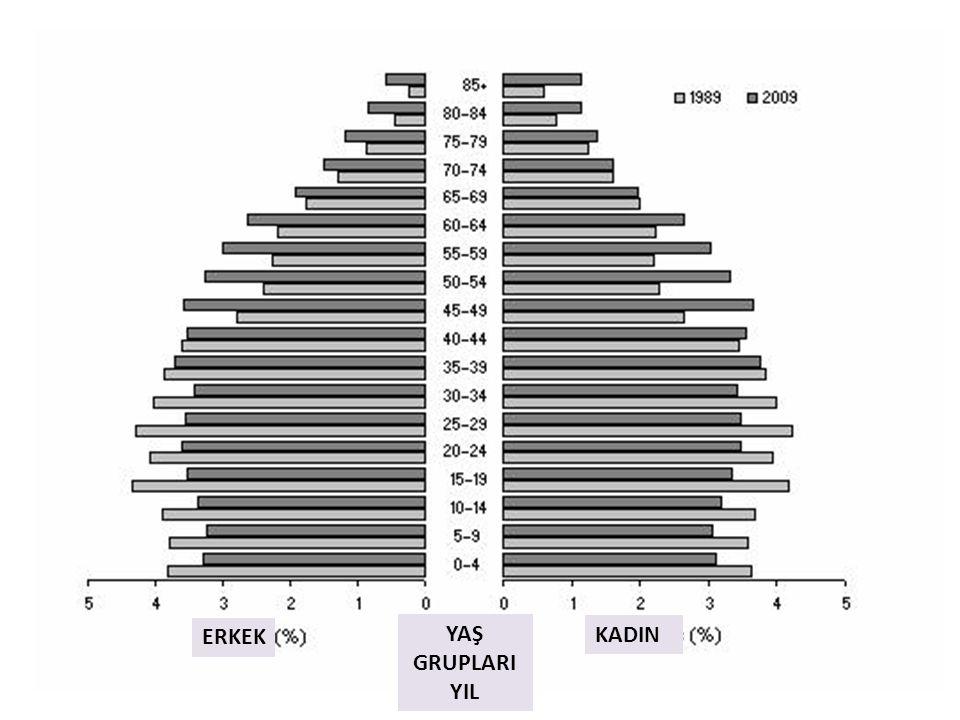 Population structure, Age and sex - Australia - 1989 and 2009p ERKEK KADIN YAŞ GRUPLARI YIL