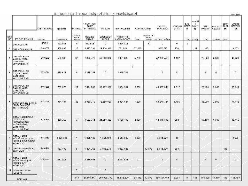 BİR KOOPERATİF PROJESİNİN FİZİBİLİTE EKONOMİK ANALİZİ 08.07.2011 SABİT YATIRIMİŞLETME YATIRIMA 1 KOOP. İÇİN SABİT YATIRIMINATOPLAMBİR PROJENİNHAYVAN S
