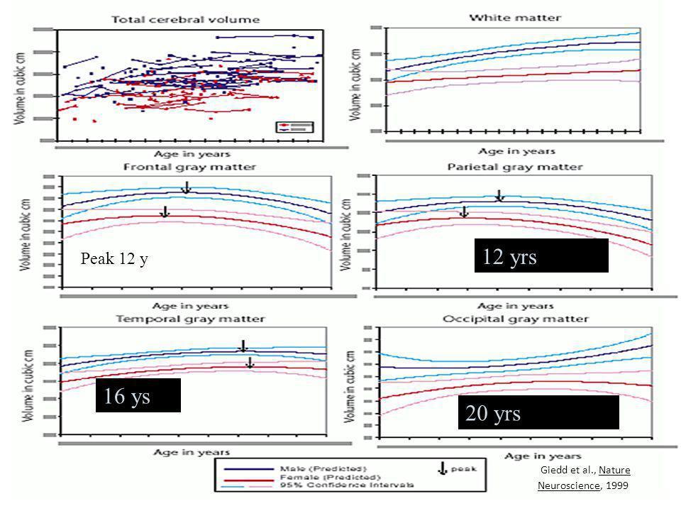 Peak 12 y 12 yrs 16 ys 20 yrs Giedd et al., Nature Neuroscience, 1999
