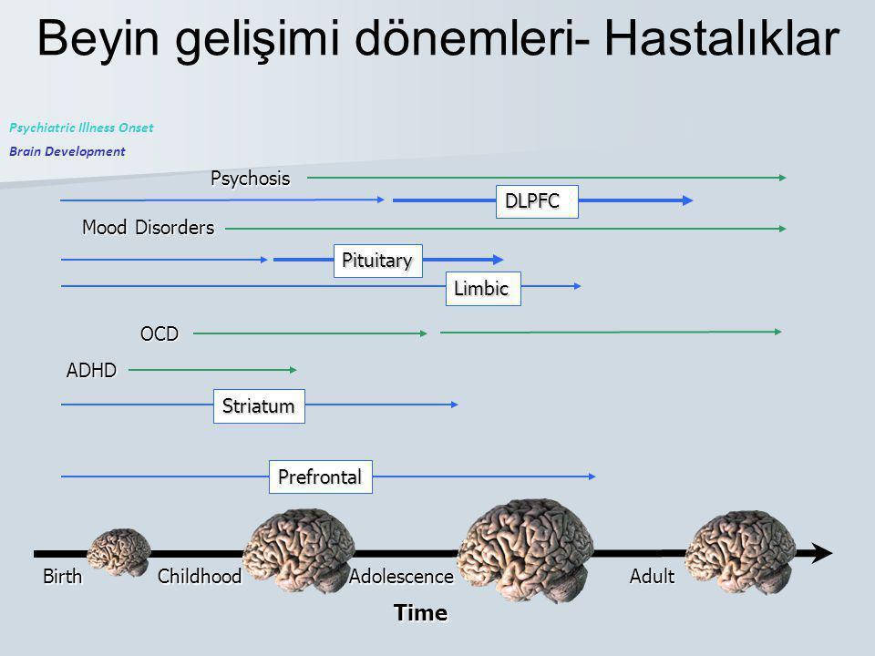 Beyin gelişimi dönemleri- HastalıklarBirthChildhoodAdolescence Adult Time Brain Development Psychiatric Illness Onset ADHD OCD Mood Disorders Psychosi