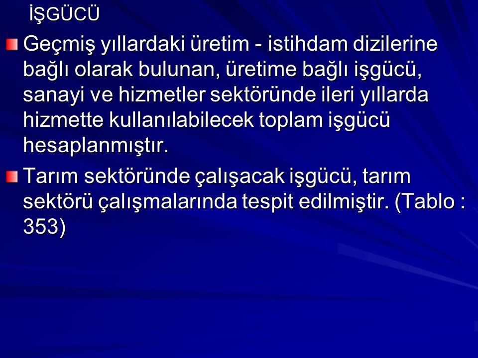 Doğurganlık oranı, Batı ve Güney Anadolu Bölgelerinde, Doğu ve Karadeniz Bölgelerine göre daha düşüktür.