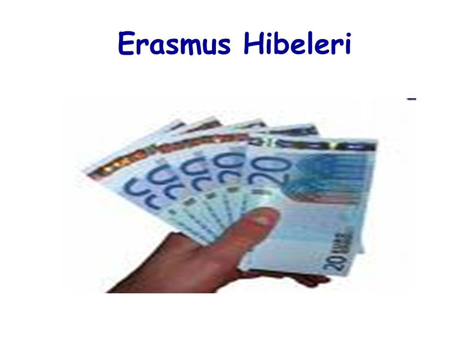 Erasmus Hibeleri