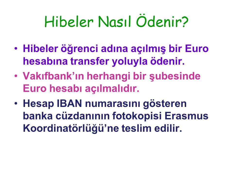 Hibeler Nasıl Ödenir. •Hibeler öğrenci adına açılmış bir Euro hesabına transfer yoluyla ödenir.