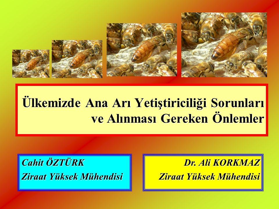Ülkemizde Ana Arı Yetiştiriciliği Sorunları ve Alınması Gereken Önlemler Cahit ÖZTÜRK Ziraat Yüksek Mühendisi Dr. Ali KORKMAZ Ziraat Yüksek Mühendisi