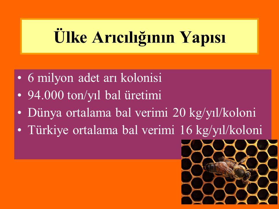 Ülke Arıcılığının Yapısı •6 milyon adet arı kolonisi •94.000 ton/yıl bal üretimi •Dünya ortalama bal verimi 20 kg/yıl/koloni •Türkiye ortalama bal ver