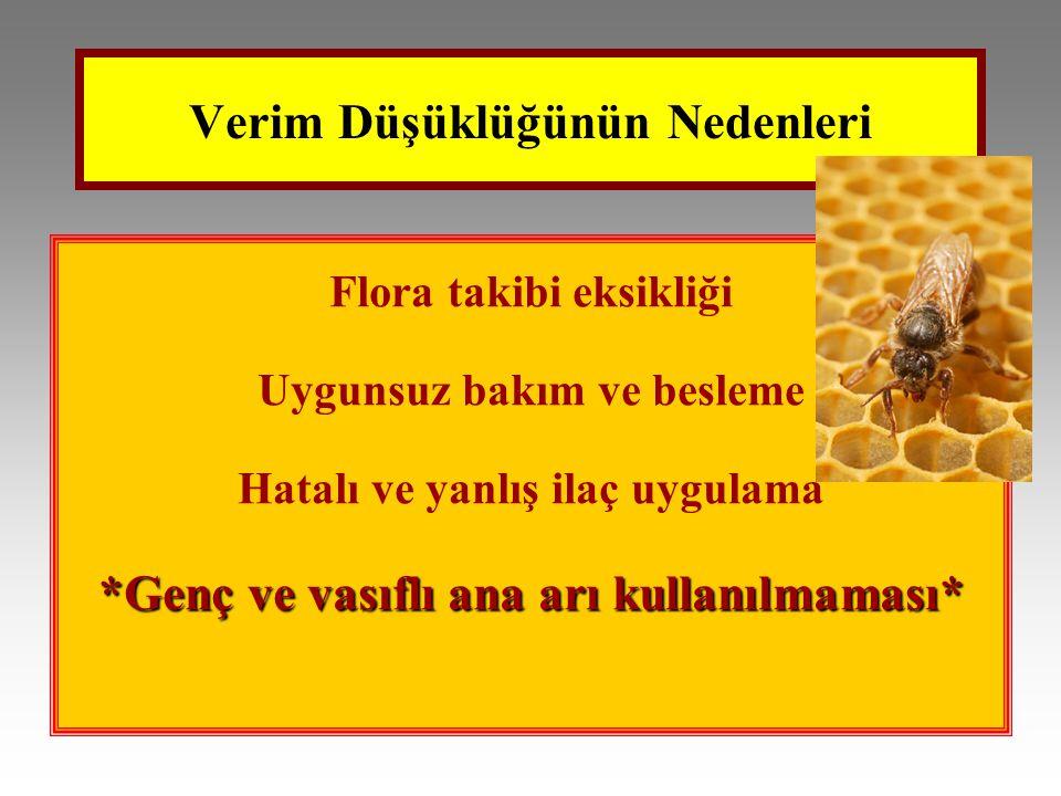 Verim Düşüklüğünün Nedenleri Flora takibi eksikliği Uygunsuz bakım ve besleme Hatalı ve yanlış ilaç uygulama *Genç ve vasıflı ana arı kullanılmaması*