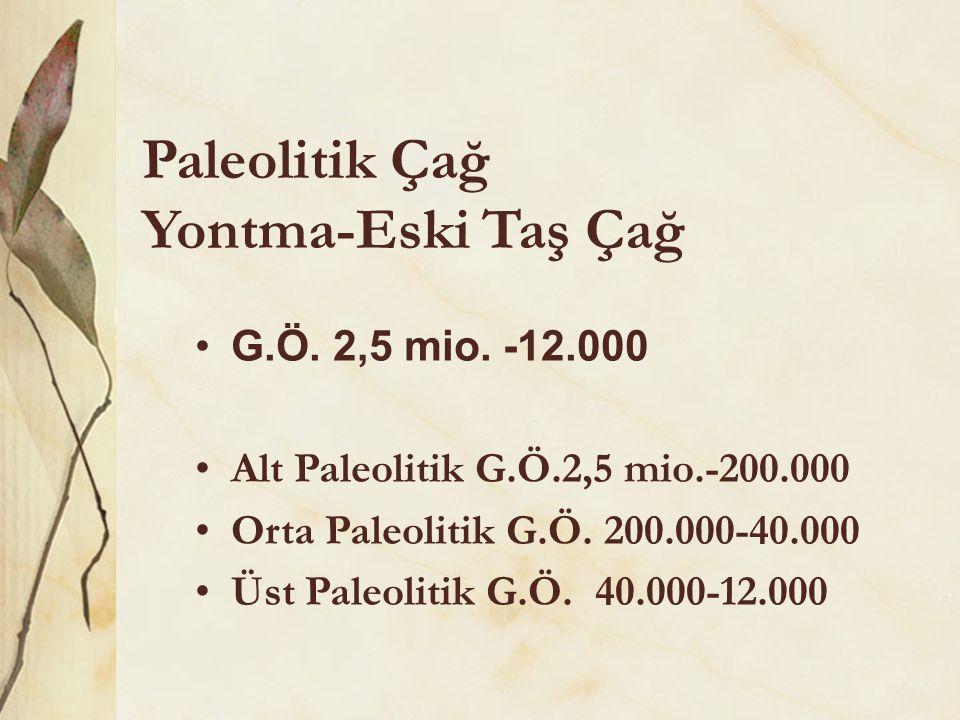 Paleolitik Çağ Yontma-Eski Taş Çağ •G.Ö. 2,5 mio. -12.000 •Alt Paleolitik G.Ö.2,5 mio.-200.000 •Orta Paleolitik G.Ö. 200.000-40.000 •Üst Paleolitik G.