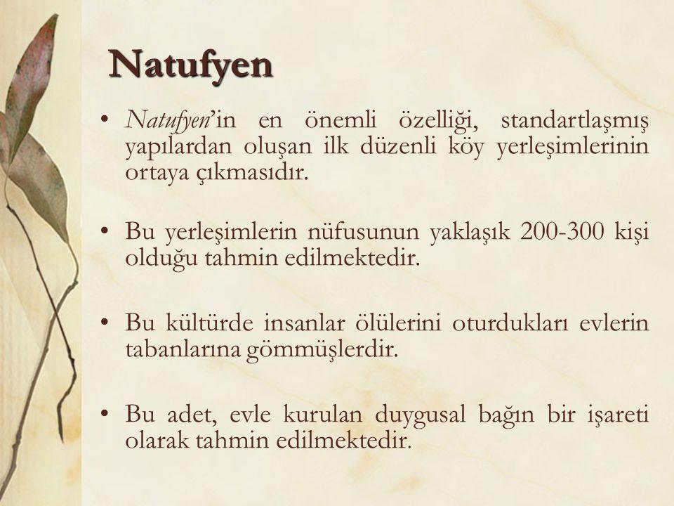 Natufyen •Natufyen'in en önemli özelliği, standartlaşmış yapılardan oluşan ilk düzenli köy yerleşimlerinin ortaya çıkmasıdır. •Bu yerleşimlerin nüfusu