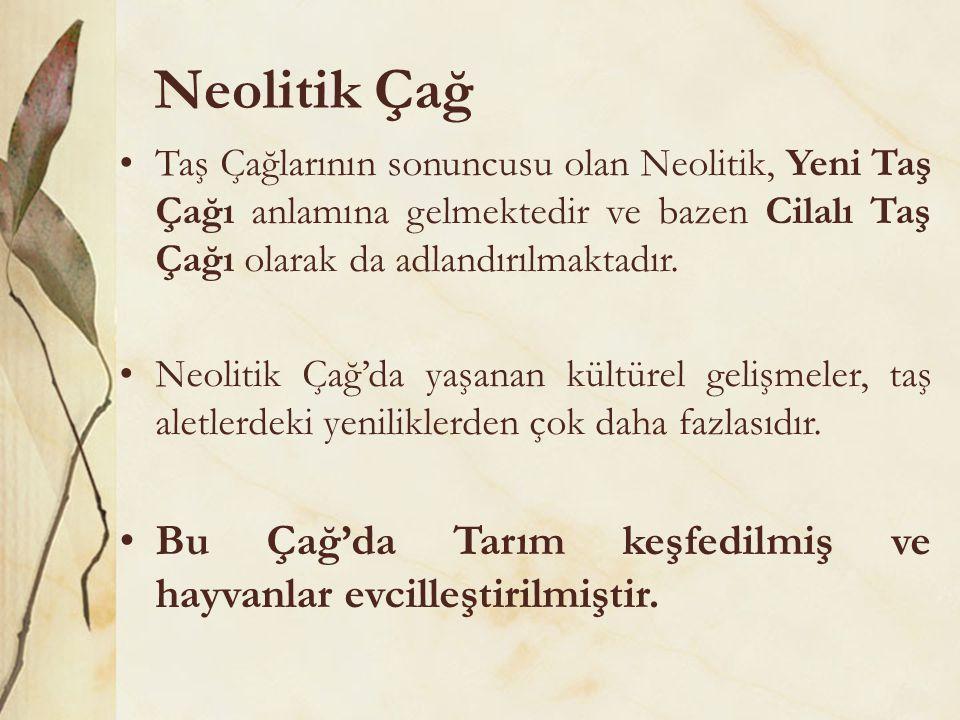 Neolitik Çağ •Taş Çağlarının sonuncusu olan Neolitik, Yeni Taş Çağı anlamına gelmektedir ve bazen Cilalı Taş Çağı olarak da adlandırılmaktadır. •Neoli